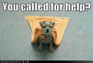 Image result for you need help funny