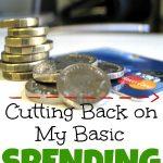 My Basic Spending