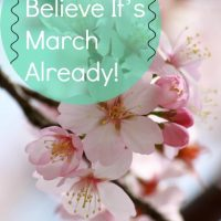I Can't Believe It's March Already!