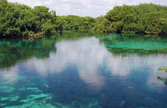 Casa Cenote - QR