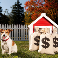 Fido's Finances: Tips to Keep Pet Care Costs Low