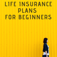 Best Life Insurance Plans for Beginners