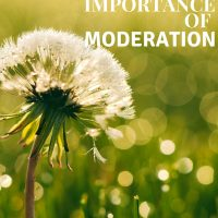 Defining Purpose and the Importance of Moderation