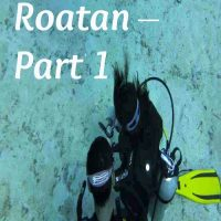 Diving in Roatan – Part 1