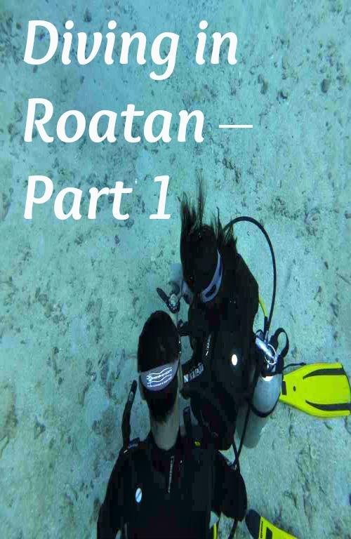 Diving in Roatan – Part 1