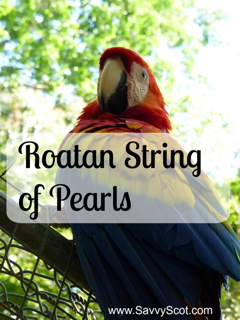 Roatan String of Pearls
