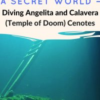 Temple of Doom) After diving the murky waters of Angelita, Calvera was a return to the crystal clear water of Grand Cenote and Casa Cenote. Temple of
