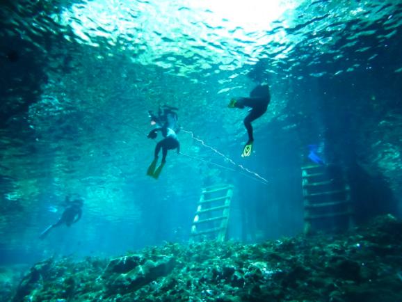Grand Cenote Snorkel Area
