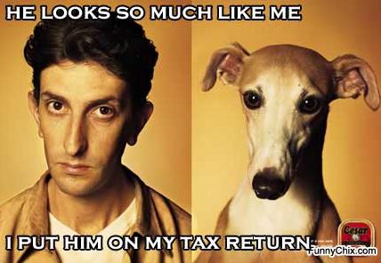 Tax return comedy