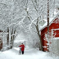 How To Save Money This Winter