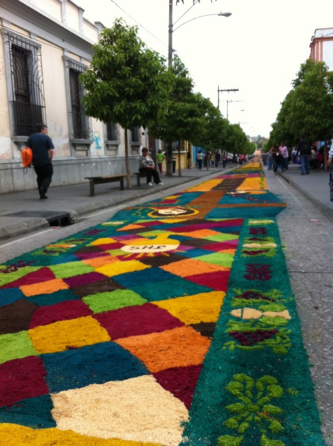 Flower bed for Easter processions in Guatemala