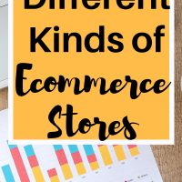 Different Kinds of Ecommerce Stores