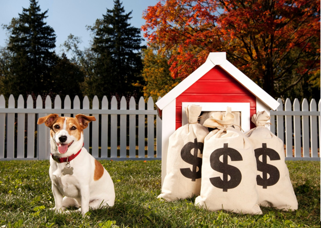 Fido's Finances Tips to Keep Pet Care Costs Low